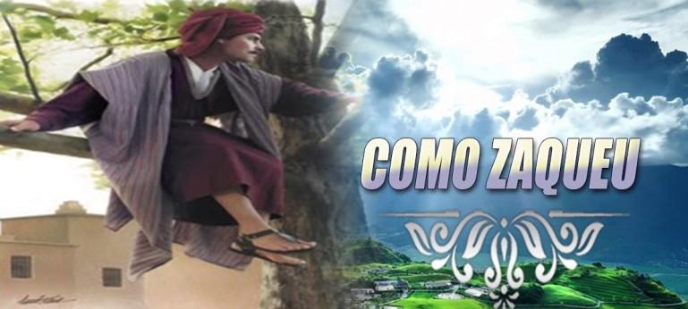 ZCOMO1