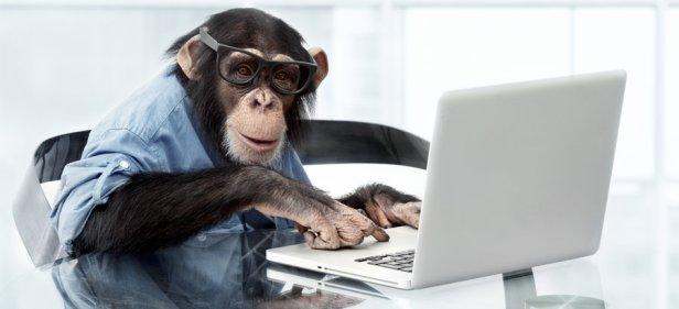 monkeycomputer
